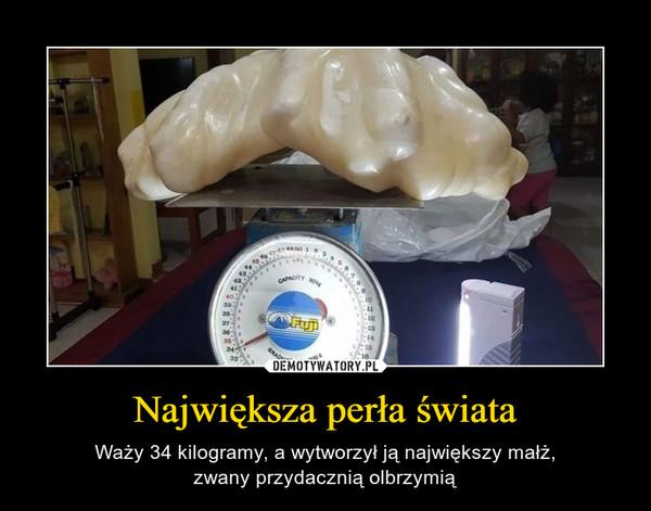 Największa perła świata – Waży 34 kilogramy, a wytworzył ją największy małż,zwany przydacznią olbrzymią