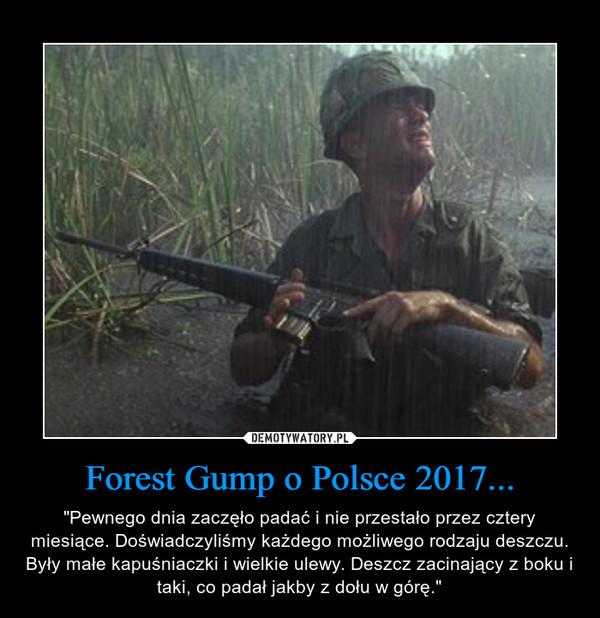"""Forest Gump o Polsce 2017... – """"Pewnego dnia zaczęło padać i nie przestało przez cztery miesiące. Doświadczyliśmy każdego możliwego rodzaju deszczu. Były małe kapuśniaczki i wielkie ulewy. Deszcz zacinający z boku i taki, co padał jakby z dołu w górę."""""""