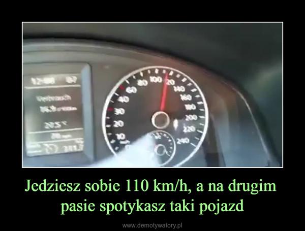 Jedziesz sobie 110 km/h, a na drugim pasie spotykasz taki pojazd –