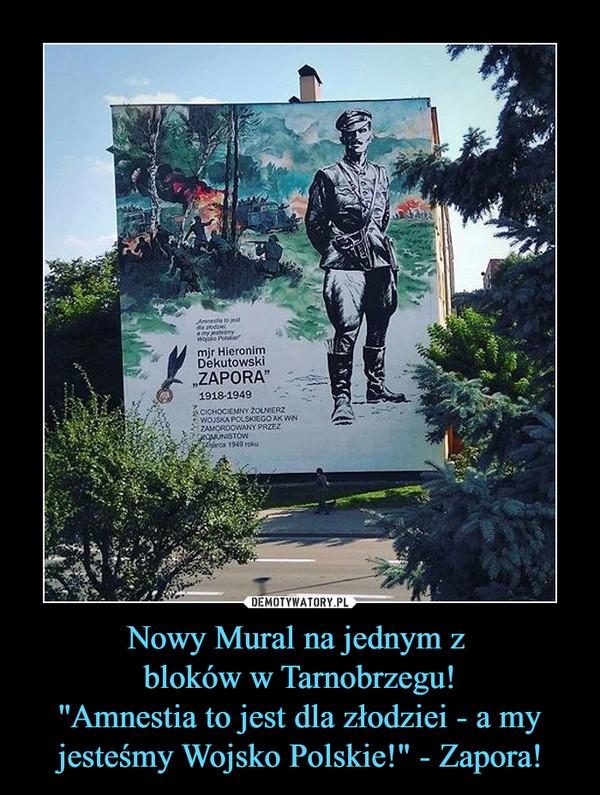 """Nowy Mural na jednym z bloków w Tarnobrzegu!''Amnestia to jest dla złodziei - a my jesteśmy Wojsko Polskie!"""" - Zapora! –"""