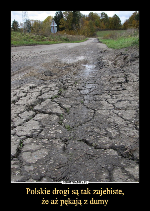 Polskie drogi są tak zajebiste,że aż pękają z dumy –