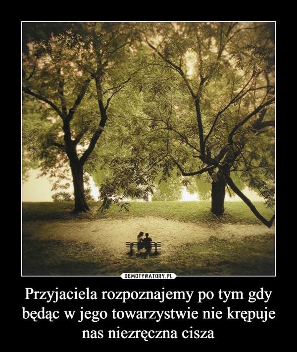 Przyjaciela rozpoznajemy po tym gdy będąc w jego towarzystwie nie krępuje nas niezręczna cisza –