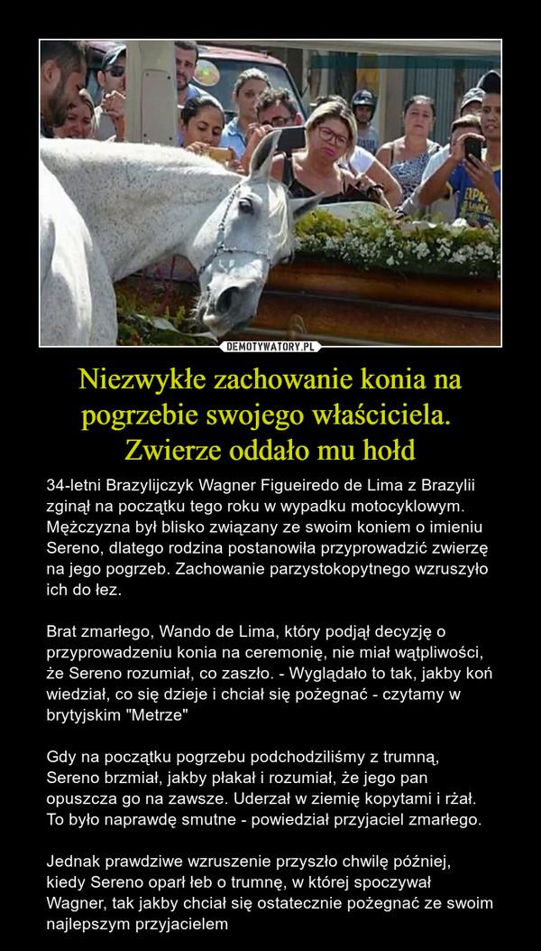 """Niezwykłe zachowanie konia na pogrzebie swojego właściciela. Zwierze oddało mu hołd – 34-letni Brazylijczyk Wagner Figueiredo de Lima z Brazylii zginął na początku tego roku w wypadku motocyklowym. Mężczyzna był blisko związany ze swoim koniem o imieniu Sereno, dlatego rodzina postanowiła przyprowadzić zwierzę na jego pogrzeb. Zachowanie parzystokopytnego wzruszyło ich do łez.Brat zmarłego, Wando de Lima, który podjął decyzję o przyprowadzeniu konia na ceremonię, nie miał wątpliwości, że Sereno rozumiał, co zaszło. - Wyglądało to tak, jakby koń wiedział, co się dzieje i chciał się pożegnać - czytamy w brytyjskim """"Metrze""""Gdy na początku pogrzebu podchodziliśmy z trumną, Sereno brzmiał, jakby płakał i rozumiał, że jego pan opuszcza go na zawsze. Uderzał w ziemię kopytami i rżał. To było naprawdę smutne - powiedział przyjaciel zmarłego.Jednak prawdziwe wzruszenie przyszło chwilę później, kiedy Sereno oparł łeb o trumnę, w której spoczywał Wagner, tak jakby chciał się ostatecznie pożegnać ze swoim najlepszym przyjacielem"""