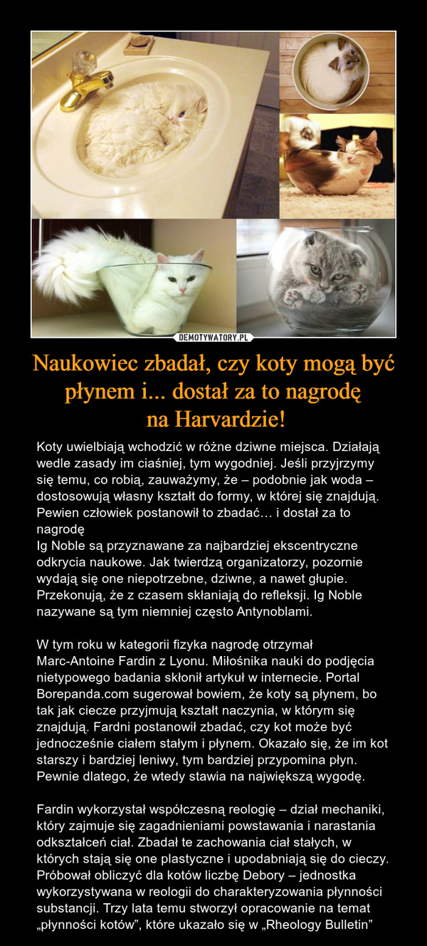 """Naukowiec zbadał, czy koty mogą być płynem i... dostał za to nagrodę na Harvardzie! – Koty uwielbiają wchodzić w różne dziwne miejsca. Działają wedle zasady im ciaśniej, tym wygodniej. Jeśli przyjrzymy się temu, co robią, zauważymy, że – podobnie jak woda – dostosowują własny kształt do formy, w której się znajdują. Pewien człowiek postanowił to zbadać… i dostał za to nagrodęIg Noble są przyznawane za najbardziej ekscentryczne odkrycia naukowe. Jak twierdzą organizatorzy, pozornie wydają się one niepotrzebne, dziwne, a nawet głupie. Przekonują, że z czasem skłaniają do refleksji. Ig Noble nazywane są tym niemniej często Antynoblami.W tym roku w kategorii fizyka nagrodę otrzymał Marc-Antoine Fardin z Lyonu. Miłośnika nauki do podjęcia nietypowego badania skłonił artykuł w internecie. Portal Borepanda.com sugerował bowiem, że koty są płynem, bo tak jak ciecze przyjmują kształt naczynia, w którym się znajdują. Fardni postanowił zbadać, czy kot może być jednocześnie ciałem stałym i płynem. Okazało się, że im kot starszy i bardziej leniwy, tym bardziej przypomina płyn. Pewnie dlatego, że wtedy stawia na największą wygodę.Fardin wykorzystał współczesną reologię – dział mechaniki, który zajmuje się zagadnieniami powstawania i narastania odkształceń ciał. Zbadał te zachowania ciał stałych, w których stają się one plastyczne i upodabniają się do cieczy. Próbował obliczyć dla kotów liczbę Debory – jednostka wykorzystywana w reologii do charakteryzowania płynności substancji. Trzy lata temu stworzył opracowanie na temat """"płynności kotów"""", które ukazało się w """"Rheology Bulletin"""""""