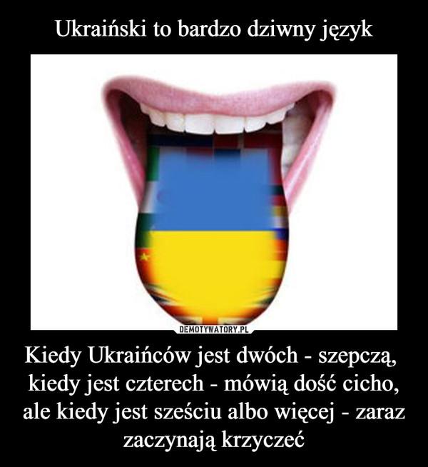 Kiedy Ukraińców jest dwóch - szepczą, kiedy jest czterech - mówią dość cicho,ale kiedy jest sześciu albo więcej - zaraz zaczynają krzyczeć –