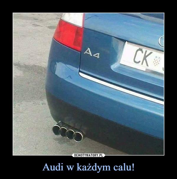 Audi w każdym calu! –