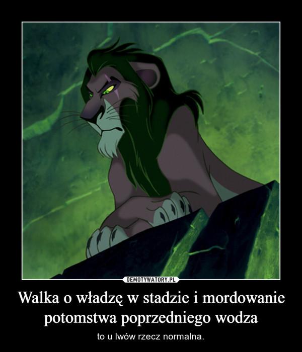 Walka o władzę w stadzie i mordowanie potomstwa poprzedniego wodza – to u lwów rzecz normalna.