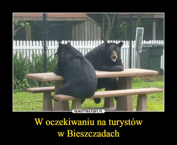 W oczekiwaniu na turystóww Bieszczadach –