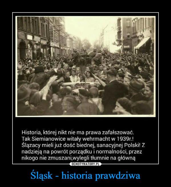 Śląsk - historia prawdziwa –