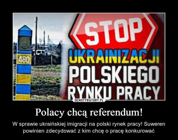 Polacy chcą referendum! – W sprawie ukraińskiej imigracji na polski rynek pracy! Suweren powinien zdecydować z kim chcę o pracę konkurować