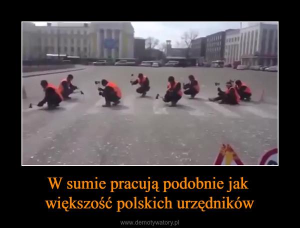 W sumie pracują podobnie jak większość polskich urzędników –