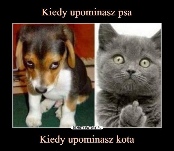 Kiedy upominasz kota –