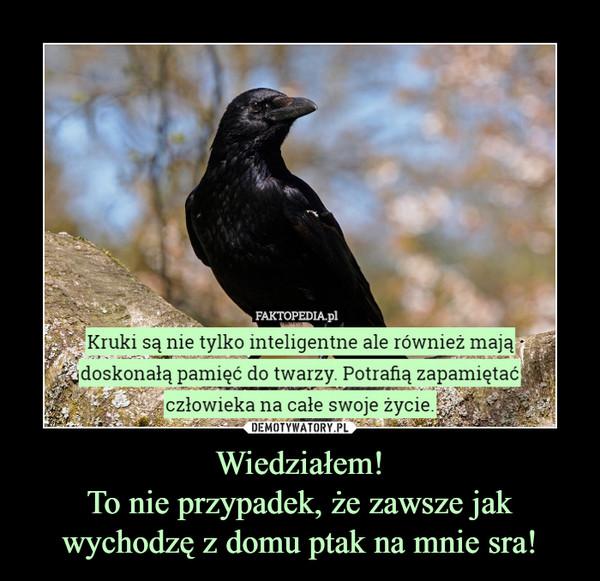 Wiedziałem!To nie przypadek, że zawsze jak wychodzę z domu ptak na mnie sra! –  Kruki są nie tylko inteligentne ale również majądoskonała pamięć do twarzy Potrafia zapamiętaćczłowieka na całe swoje zycie