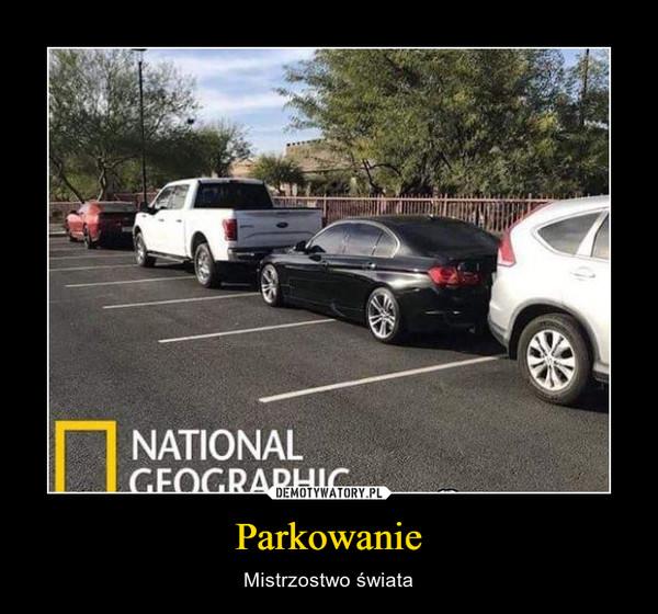 Parkowanie – Mistrzostwo świata