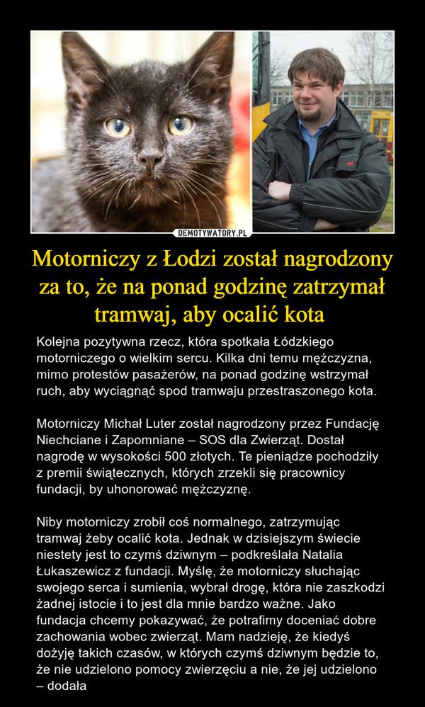 Motorniczy z Łodzi został nagrodzonyza to, że na ponad godzinę zatrzymał tramwaj, aby ocalić kota  – Kolejna pozytywna rzecz, która spotkała Łódzkiego motorniczego o wielkim sercu. Kilka dni temu mężczyzna, mimo protestów pasażerów, na ponad godzinę wstrzymał ruch, aby wyciągnąć spod tramwaju przestraszonego kota.Motorniczy Michał Luter został nagrodzony przez Fundację Niechciane i Zapomniane – SOS dla Zwierząt. Dostał nagrodę w wysokości 500 złotych. Te pieniądze pochodziły z premii świątecznych, których zrzekli się pracownicy fundacji, by uhonorować mężczyznę.Niby motorniczy zrobił coś normalnego, zatrzymując tramwaj żeby ocalić kota. Jednak w dzisiejszym świecie niestety jest to czymś dziwnym – podkreślała Natalia Łukaszewicz z fundacji. Myślę, że motorniczy słuchając swojego serca i sumienia, wybrał drogę, która nie zaszkodzi żadnej istocie i to jest dla mnie bardzo ważne. Jako fundacja chcemy pokazywać, że potrafimy doceniać dobre zachowania wobec zwierząt. Mam nadzieję, że kiedyś dożyję takich czasów, w których czymś dziwnym będzie to, że nie udzielono pomocy zwierzęciu a nie, że jej udzielono – dodała