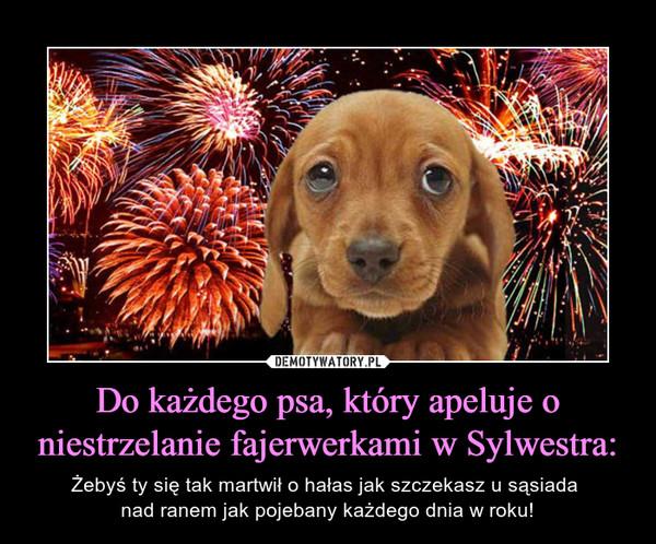 Do każdego psa, który apeluje o niestrzelanie fajerwerkami w Sylwestra: – Żebyś ty się tak martwił o hałas jak szczekasz u sąsiada nad ranem jak pojebany każdego dnia w roku!