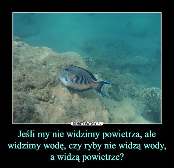 Jeśli my nie widzimy powietrza, ale widzimy wodę, czy ryby nie widzą wody, a widzą powietrze? –