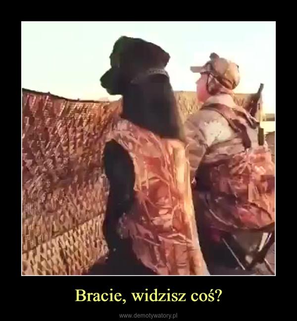 Bracie, widzisz coś? –