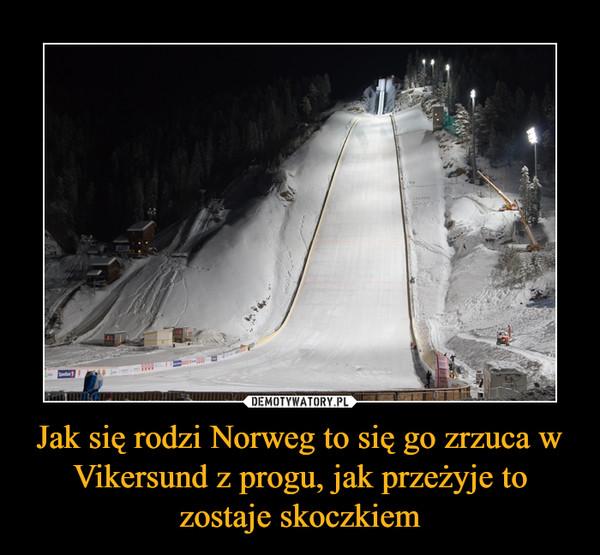 Jak się rodzi Norweg to się go zrzuca w Vikersund z progu, jak przeżyje to zostaje skoczkiem –