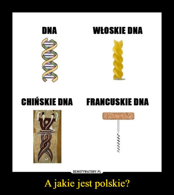 A jakie jest polskie? –  DNA włoskie chińskie francuskie