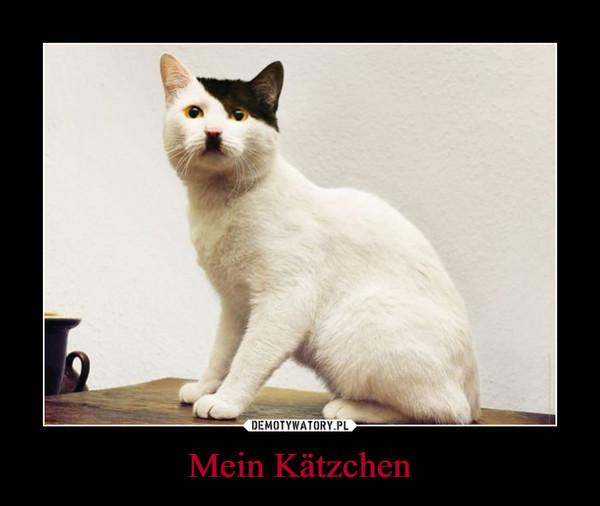 Mein Kätzchen –