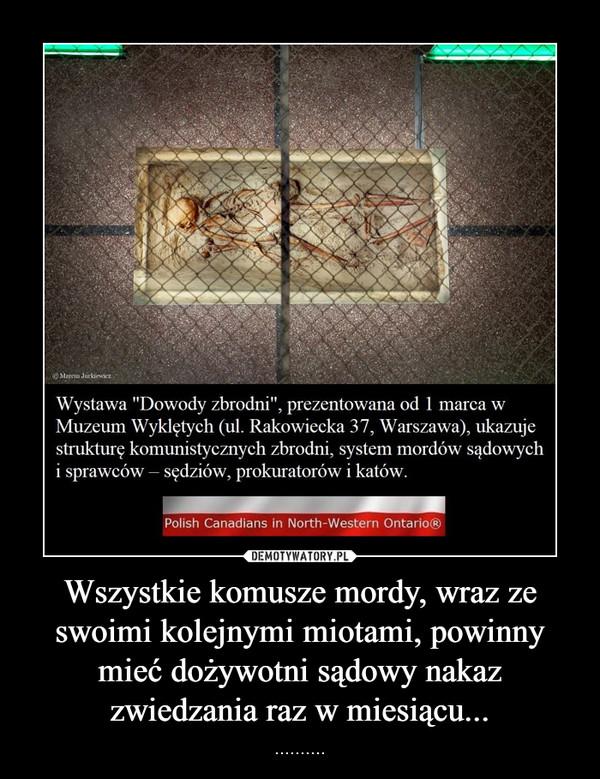 Wszystkie komusze mordy, wraz ze swoimi kolejnymi miotami, powinny mieć dożywotni sądowy nakaz zwiedzania raz w miesiącu... – ..........