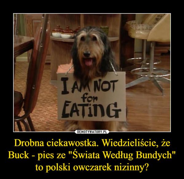 """Drobna ciekawostka. Wiedzieliście, że Buck - pies ze """"Świata Według Bundych"""" to polski owczarek nizinny? –"""