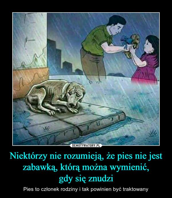 Niektórzy nie rozumieją, że pies nie jest zabawką, którą można wymienić,gdy się znudzi – Pies to członek rodziny i tak powinien być traktowany