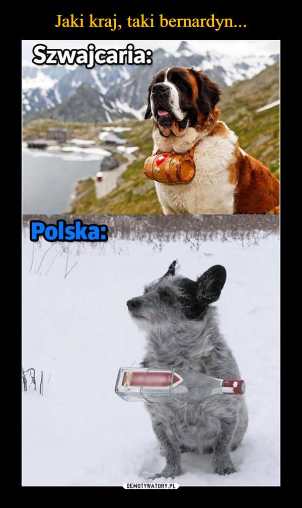 –  Szwajcaria: Polska: