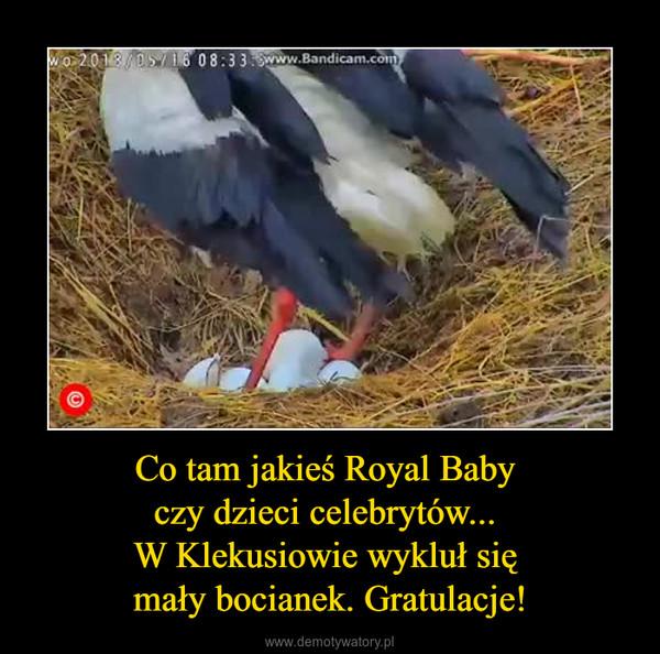 Co tam jakieś Royal Baby czy dzieci celebrytów... W Klekusiowie wykluł się mały bocianek. Gratulacje! –