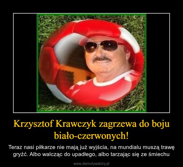 Krzysztof Krawczyk zagrzewa do boju biało-czerwonych! – Teraz nasi piłkarze nie mają już wyjścia, na mundialu muszą trawę gryźć. Albo walcząc do upadłego, albo tarzając się ze śmiechu