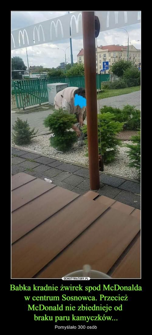 Babka kradnie żwirek spod McDonalda w centrum Sosnowca. Przecież McDonald nie zbiednieje od  braku paru kamyczków...