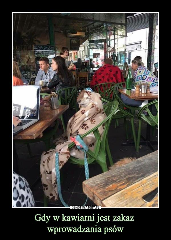 Gdy w kawiarni jest zakaz wprowadzania psów –