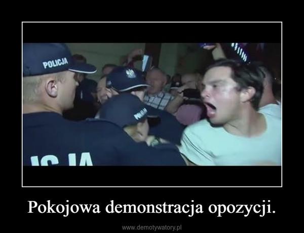 Pokojowa demonstracja opozycji. –