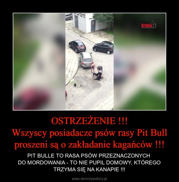 OSTRZEŻENIE !!!Wszyscy posiadacze psów rasy Pit Bull proszeni są o zakładanie kagańców !!! – PIT BULLE TO RASA PSÓW PRZEZNACZONYCH DO MORDOWANIA - TO NIE PUPIL DOMOWY, KTÓREGO TRZYMA SIĘ NA KANAPIE !!!