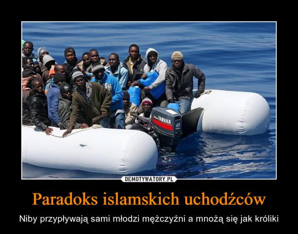 Paradoks islamskich uchodźców – Niby przypływają sami młodzi mężczyźni a mnożą się jak króliki
