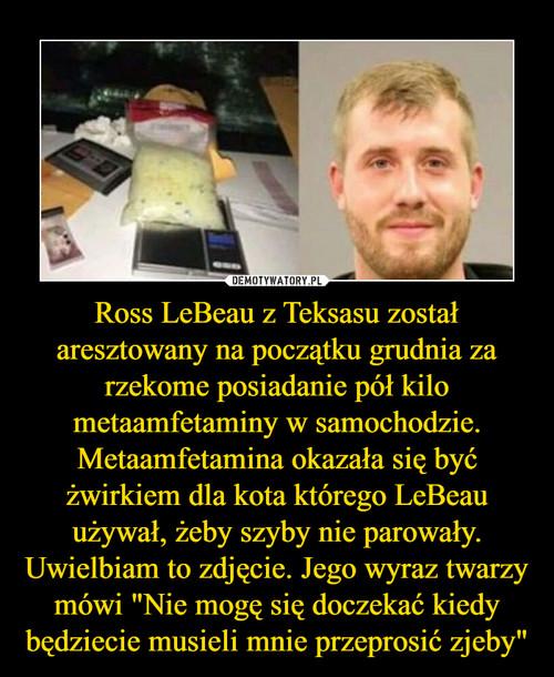 """Ross LeBeau z Teksasu został aresztowany na początku grudnia za rzekome posiadanie pół kilo metaamfetaminy w samochodzie. Metaamfetamina okazała się być żwirkiem dla kota którego LeBeau używał, żeby szyby nie parowały. Uwielbiam to zdjęcie. Jego wyraz twarzy mówi """"Nie mogę się doczekać kiedy będziecie musieli mnie przeprosić zjeby"""""""