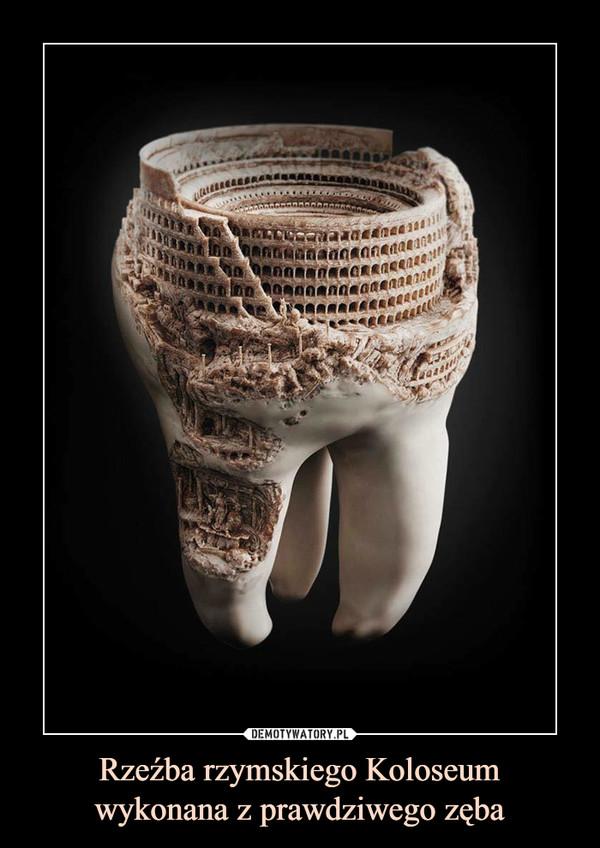 Rzeźba rzymskiego Koloseumwykonana z prawdziwego zęba –