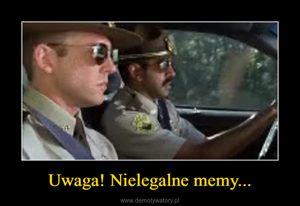 Uwaga! Nielegalne memy... –