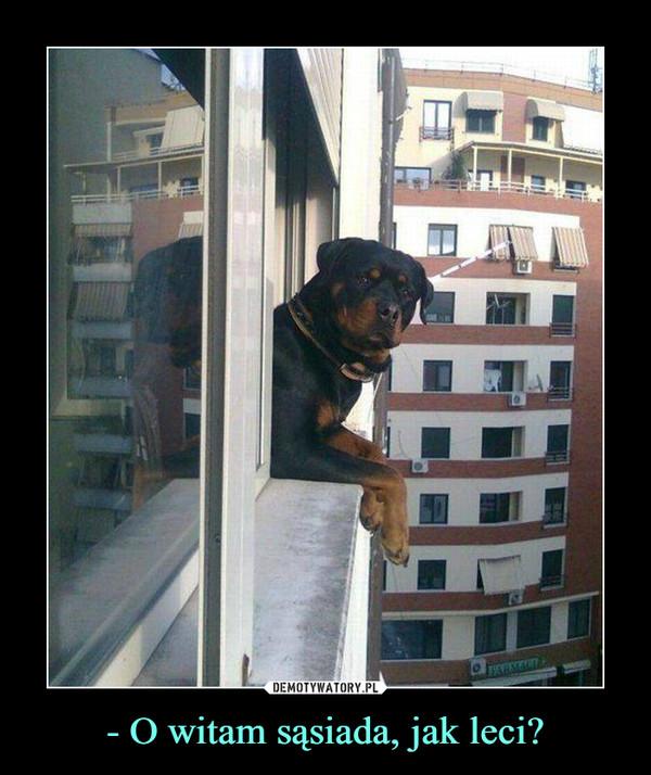 - O witam sąsiada, jak leci? –