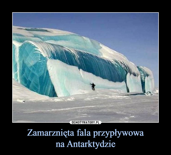 Zamarznięta fala przypływowana Antarktydzie –