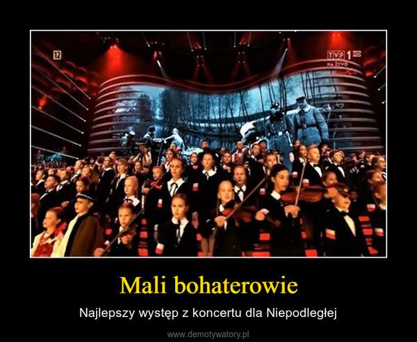 Mali bohaterowie – Najlepszy występ z koncertu dla Niepodległej