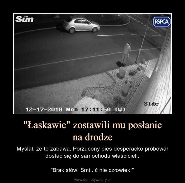 """""""Łaskawie"""" zostawili mu posłaniena drodze – Myślał, że to zabawa. Porzucony pies desperacko próbował dostać się do samochodu właścicieli.""""Brak słów! Śmi...ć nie człowiek!"""""""