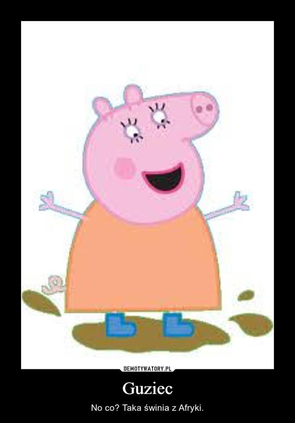 Guziec – No co? Taka świnia z Afryki.