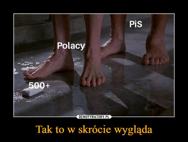 Tak to w skrócie wygląda –  PiS Polacy 500+