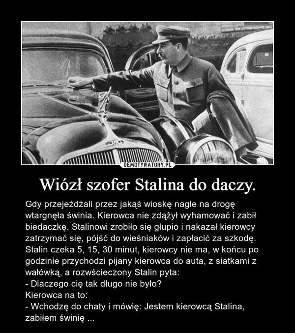 Wiózł szofer Stalina do daczy. – Gdy przejeżdżali przez jakąś wioskę nagle na drogę wtargnęła świnia. Kierowca nie zdążył wyhamować i zabił biedaczkę. Stalinowi zrobiło się głupio i nakazał kierowcy zatrzymać się, pójść do wieśniaków i zapłacić za szkodę. Stalin czeka 5, 15, 30 minut, kierowcy nie ma, w końcu po godzinie przychodzi pijany kierowca do auta, z siatkami z wałówką, a rozwścieczony Stalin pyta:- Dlaczego cię tak długo nie było?Kierowca na to:- Wchodzę do chaty i mówię: Jestem kierowcą Stalina, zabiłem świnię ...