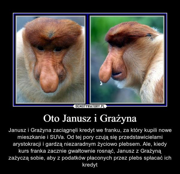Oto Janusz i Grażyna – Janusz i Grażyna zaciągnęli kredyt we franku, za który kupili nowe mieszkanie i SUVa. Od tej pory czują się przedstawicielami arystokracji i gardzą niezaradnym życiowo plebsem. Ale, kiedy kurs franka zacznie gwałtownie rosnąć, Janusz z Grażyną zażyczą sobie, aby z podatków płaconych przez plebs spłacać ich kredyt