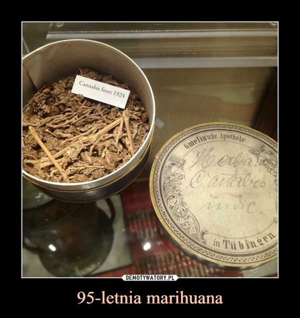 95-letnia marihuana –