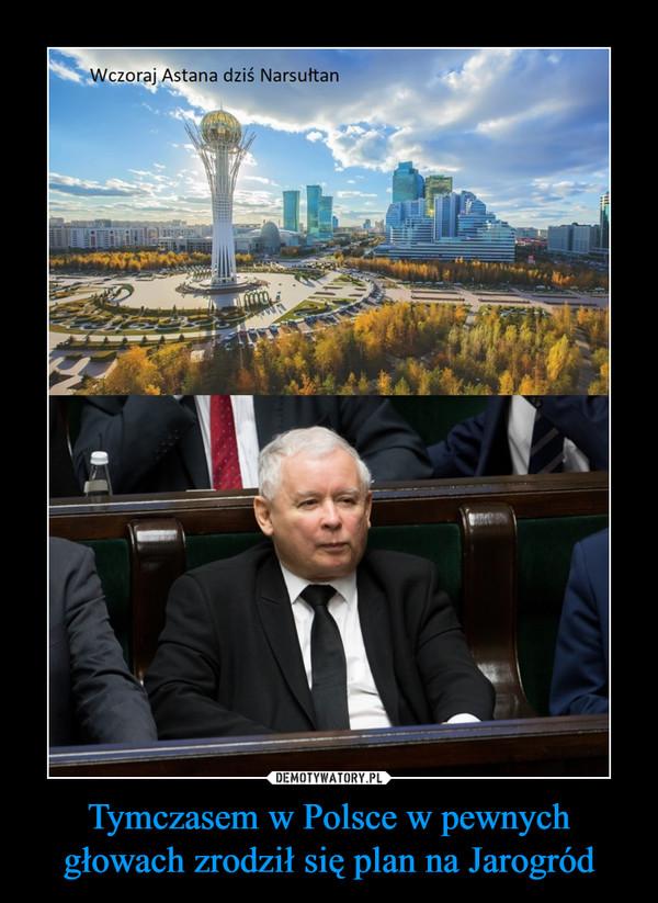 Tymczasem w Polsce w pewnych głowach zrodził się plan na Jarogród –