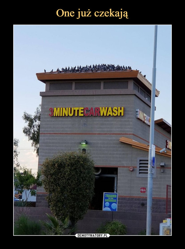–  3 minute car wash
